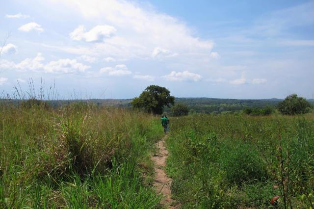 the path to the well in Te Okot